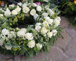 L'Hortensia - Fleuriste